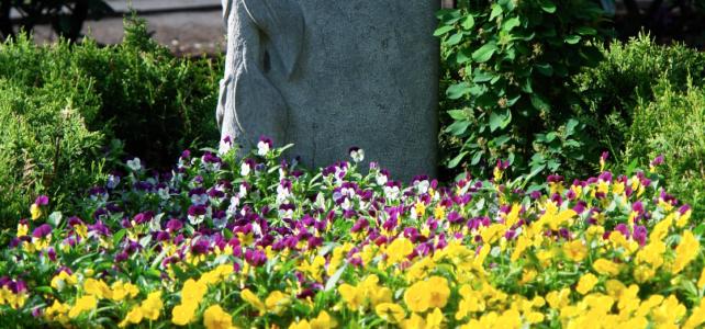 Frühling auf dem Stellinger Friedhof