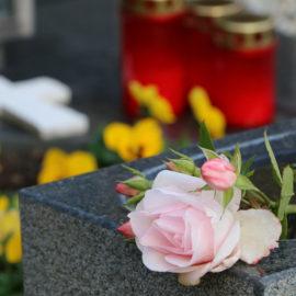 Das Team der Friedhofsgärtnerei ist für Sie da!